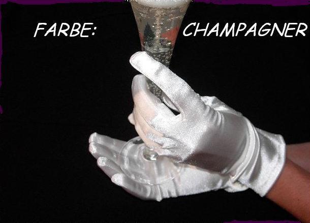 Paar Damen Handschuhe Fasching Hochzeit Kurz Party Halloween Champagner Satin